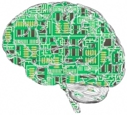 Ten Brain Science Studies from 2011 Worth Talking About