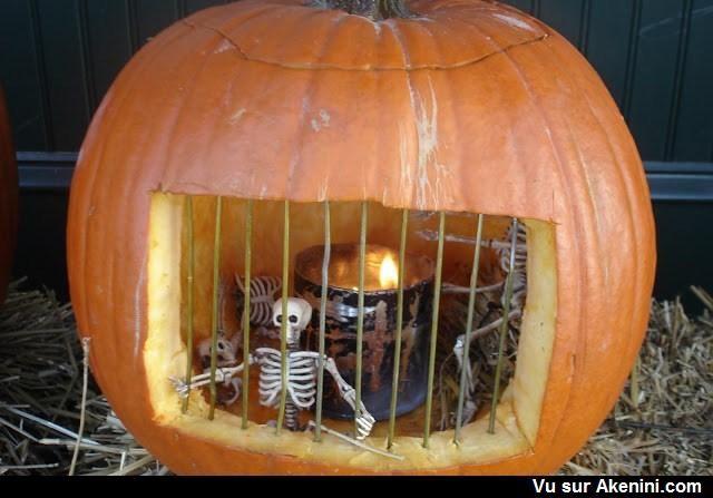 Halloween - citrouille - pumpkin