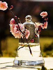 mesa centrais projeto sino vaso de vidro claro peça central - pequenas deocrations tabela