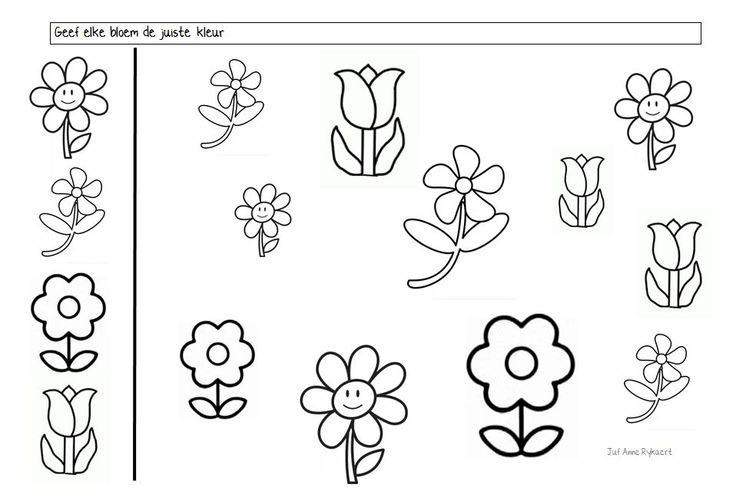 Geef elke bloem de juiste kleur (blanco)