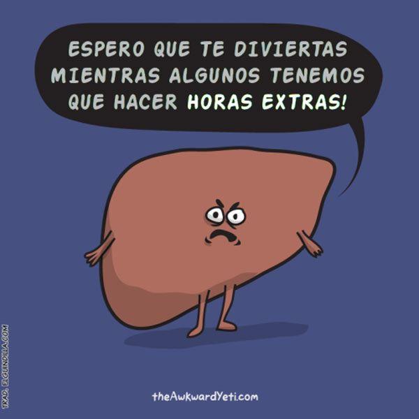 Feliz año nuevo de tu hígado. #humor #risa #graciosas #chistosas #divertidas