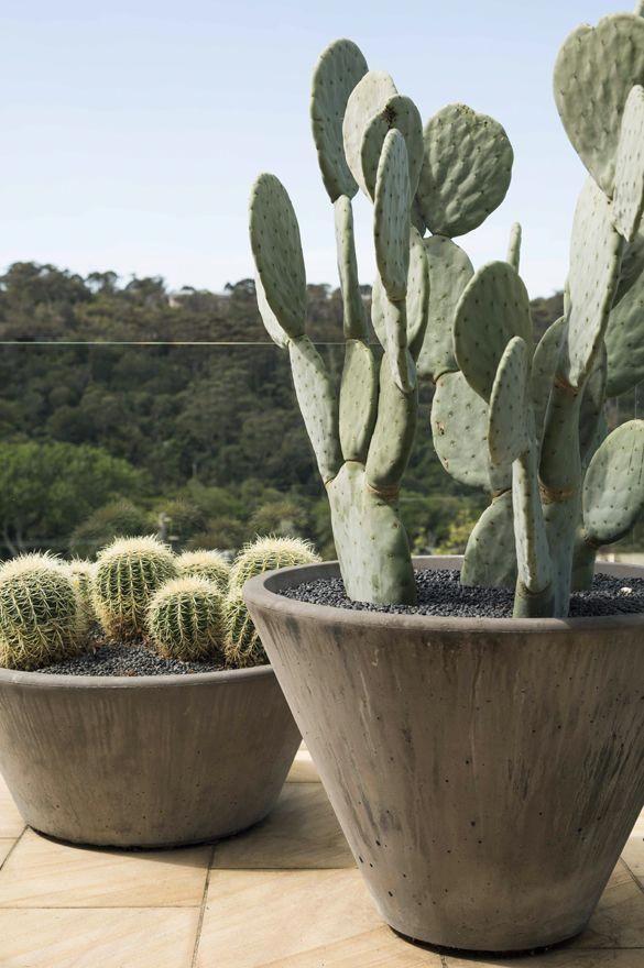 Best Gardening Websites With Images Vertical Herb Garden