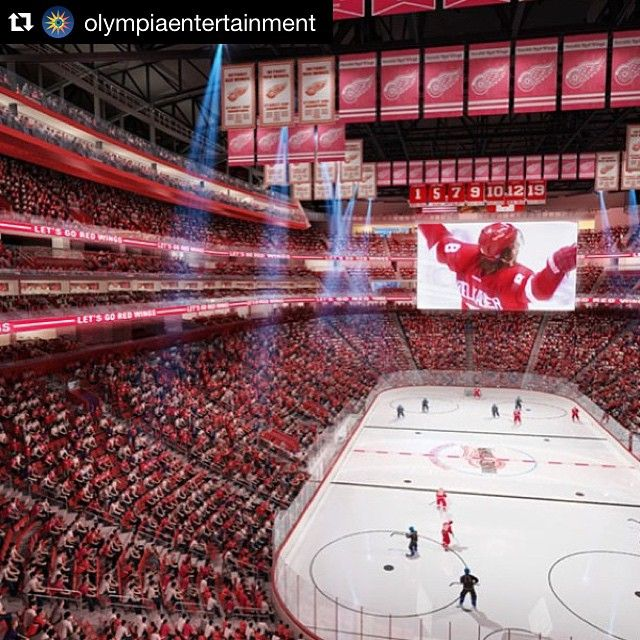 1009 best Redwings images on Pinterest   Detroit red wings, Ice ...