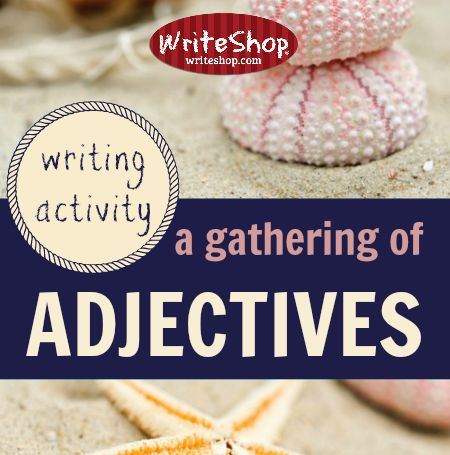 A+gathering+of+adjectives+|+Writing+activity