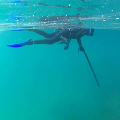 425 best images about spearfishing scuba diving on for Fly fishing cozumel