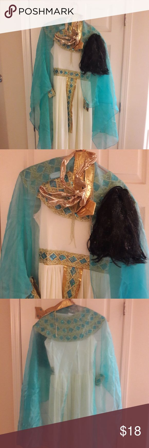 NWT CLEOPATRA HOLIDAY COSTUME SIZE XL NWT CLEOPATRA HOLIDAY COSTUME SIZE XL Complete with head dress,  black Cleopatra wig, wrap-around turquoise scarf. WONDERFUL HOLIDAY COSTUME!!!  Retailed for $50 Other