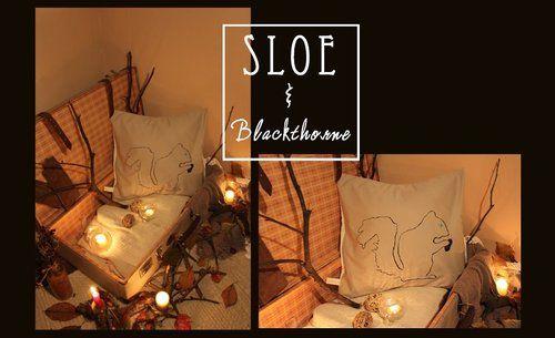 Sloe pillows 50 x 50 .