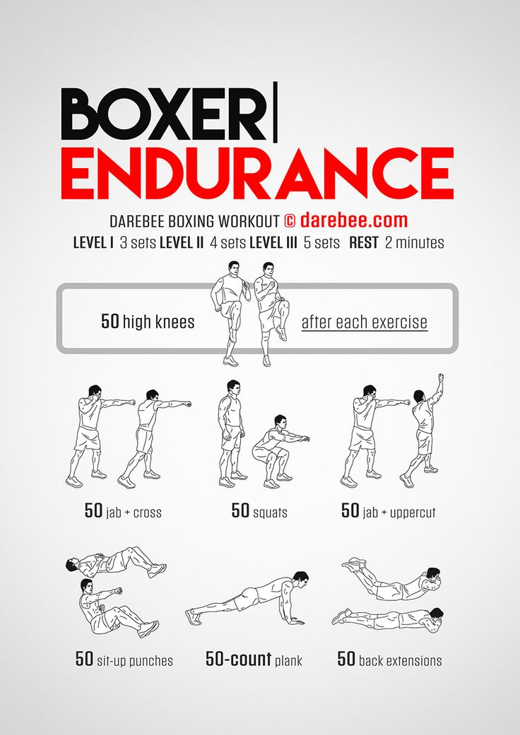 Boxer Endurance Workout - Concentration - Full Body