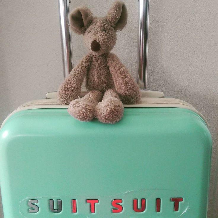 Yes! De nieuwe koffer voor de vakantie is binnen! #muis #fotografie #muisopreis #koffer #suitsuit #happy #followmytrip