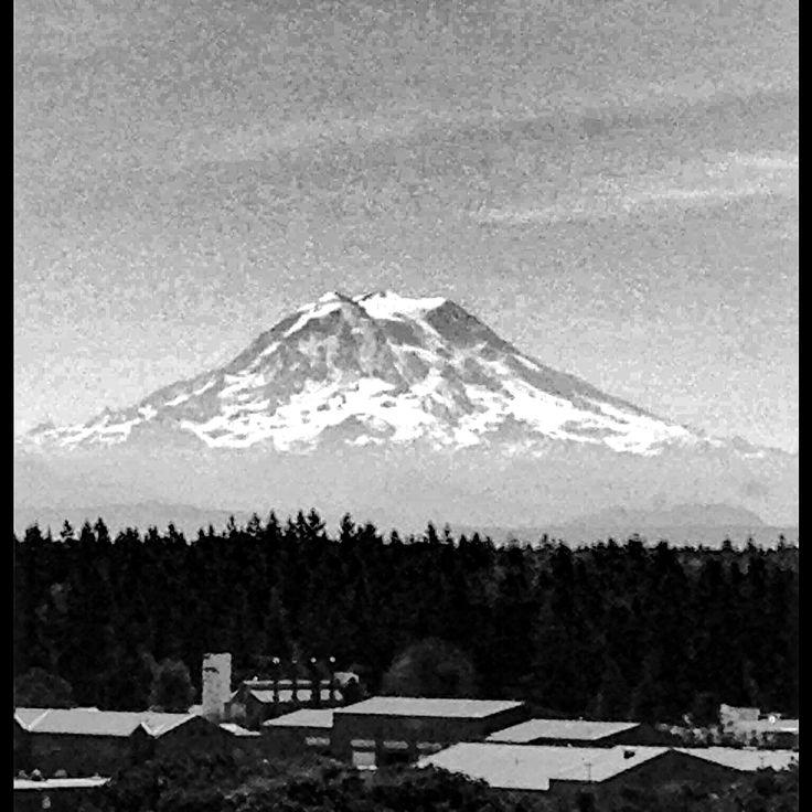 Mt Rainier 332 best Thereu0027s no place