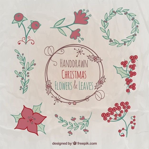 Free vector Hand drawn christmas flowers and leaves #34109