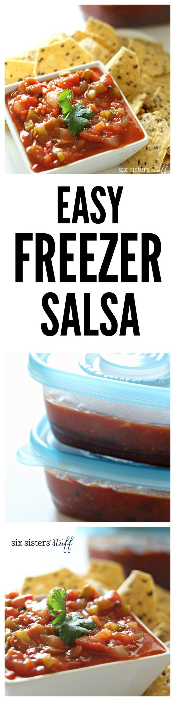 Easy Freezer Salsa on SixSistersStuff.com - takes less than 1 hour!