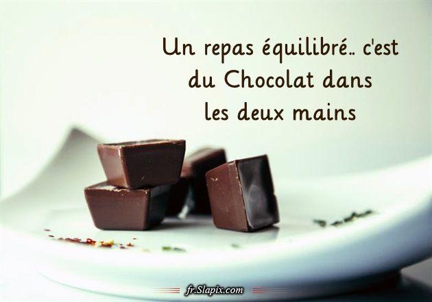 Un Repas Equilibre C Est Du Chocolat Dans Les Deux Mains Citation Chocolat Repas Humour Repas Equilibre