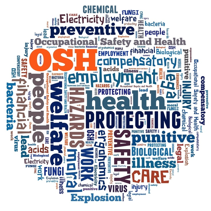 audit of health and safety systems and records Workplace health and safety management system (whsms)  health and safety audits of the whsms  health and safety records are maintained in accordance with.