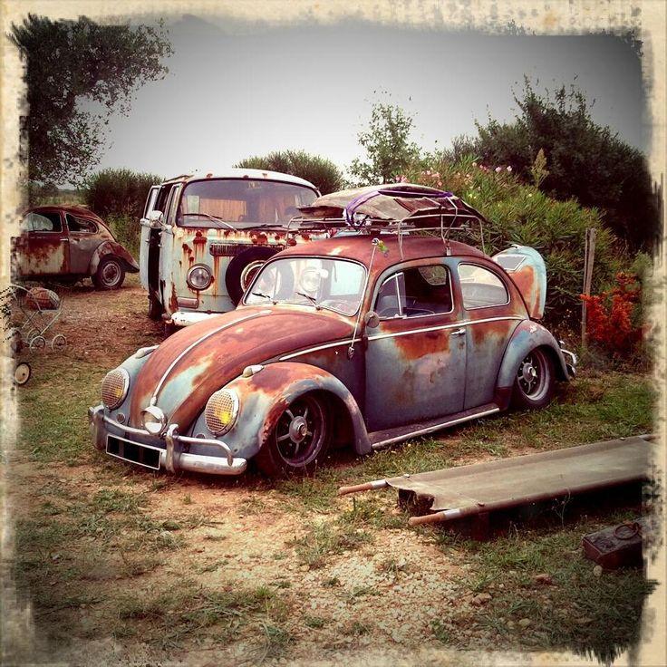 Old Bugs Never Die!