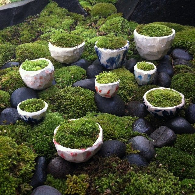 Inspiring  Best Images About Moss On Pinterest  Gardens Moss Wreath  With Interesting Moss Garden By Atelier Te At Wwwstudiogblogcom With Captivating Best Places In Covent Garden Also Houghton Garden Centre In Addition Is Sawdust Good For The Garden And Garden Centre Sleaford As Well As Metal Garden Edging Uk Additionally Free Garden Design From Pinterestcom With   Interesting  Best Images About Moss On Pinterest  Gardens Moss Wreath  With Captivating Moss Garden By Atelier Te At Wwwstudiogblogcom And Inspiring Best Places In Covent Garden Also Houghton Garden Centre In Addition Is Sawdust Good For The Garden From Pinterestcom