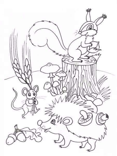 560 Best Cartoons Images