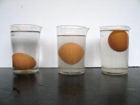 En la siguiente imagen se representa un experimento físico que sirve de inspiración para trabajar en un aula de Educación Infantil el concepto de agua salada y no salada y también el concepto flota-no flota