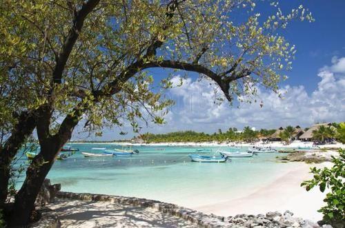 Excelente terreno colindante con cenote azul turquesa mide en total 67.27 hectáreas  * Casi enfrente del Hotel Grand Palladium Colonial Resort and Spa, en el corazón de la Riviera Maya.   *A menos de 35 km de la zona arqueológica de Tulum.   *A 30 minutos de Playa del Carmen.   *A 25 km del parque Xcaret.   *A 80 km de Cancún.   * Distancia al aeropuerto: 80 Km. (50,00 Mi.).