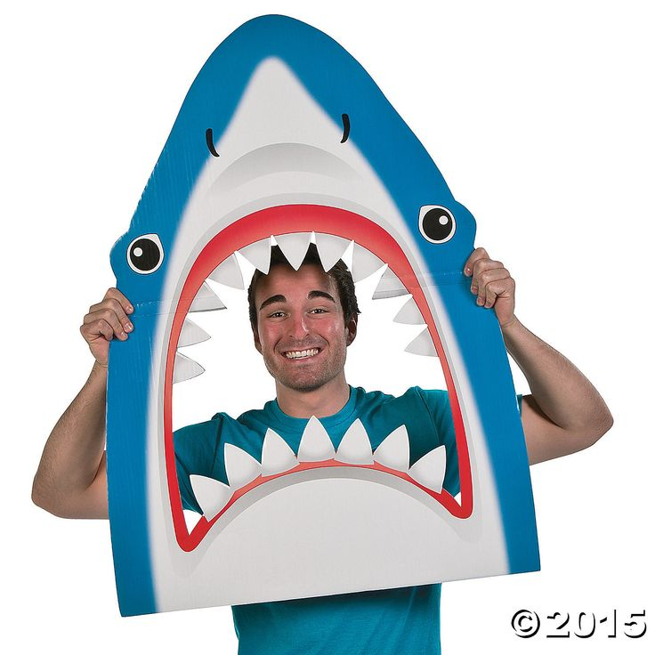 Shark Photo Prop