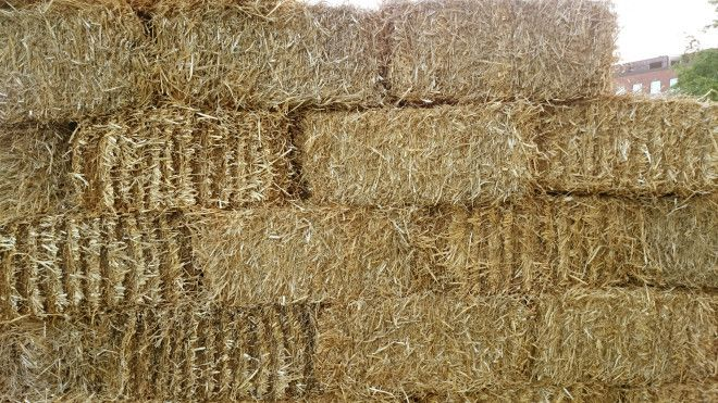 Straw bales texture / Halm