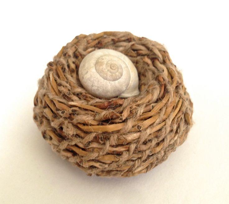 Palm inflorescence, snail shell, 2014