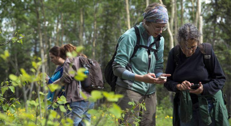 Apps verdes  Ciencia y tecnología se potencian en estas Apps recomendadas para exploradores de la naturaleza: MAP OF LIFE: Conocé la flora y fauna cercana a tu ubicación desde cualquier parte del mundo. PLANTNET: Fotografiá plantas conocé las especies que te rodean y contruibuí a un proyecto botánico mundial.  iNATURALIST:  Registrá tus observaciones fotografías conoce sobre todo tipo de especies colaborá con tu foto en muchos proyectos científicos mundiales. Qué esperas para convertir tus…