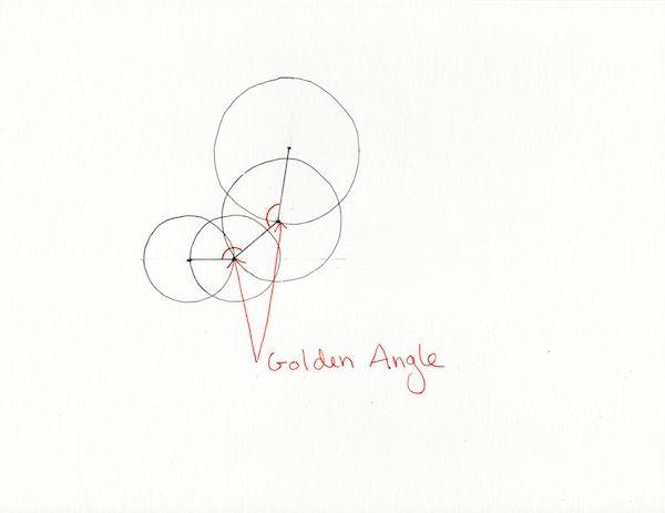 the-rx: Fibonacci Circle Curves