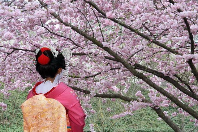 Samourais et Jardins zen - Japon : Circuits en groupe Japon | Asia.fr