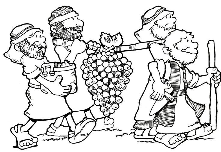 12 spies coloring sheet | ... moses to pick leaders from each of the the twelve tribes of israel