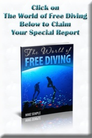 Free Diving Guide