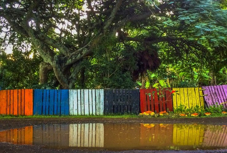 A Fence Of A Different Color - rprt photo