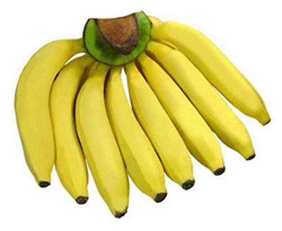 Musa-Kluai-Hom-Tong-Gros-Michel-Banana-Plant-FREE-Phytosanitary-Certificate