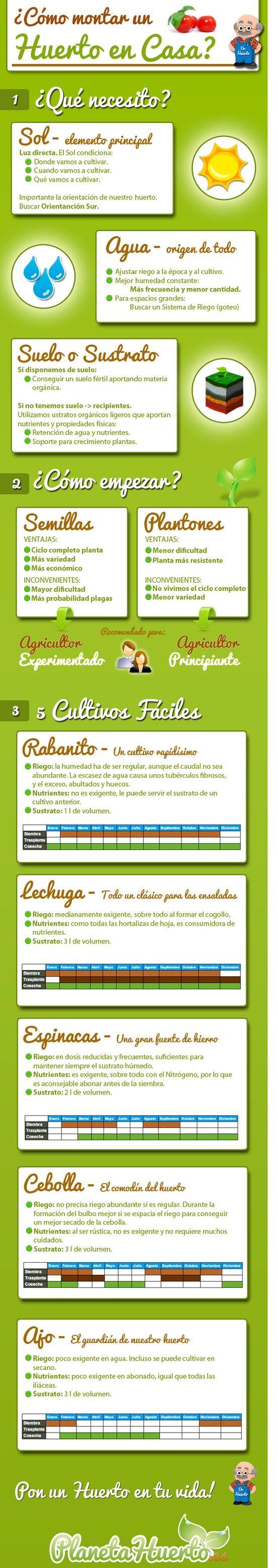 Cómo empezar el huerto familiar (infografía)