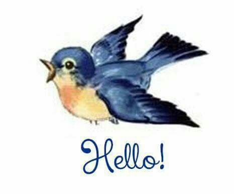Hi, all my birds enjoy being pinned. Thank you!