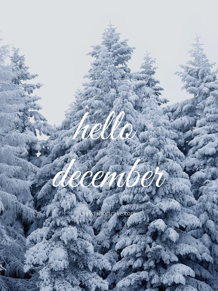 hello december | sassy shortcake