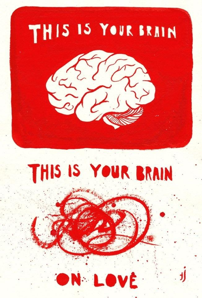 This is your brain vs this is your brain on love   Anonymous ART of Revolution