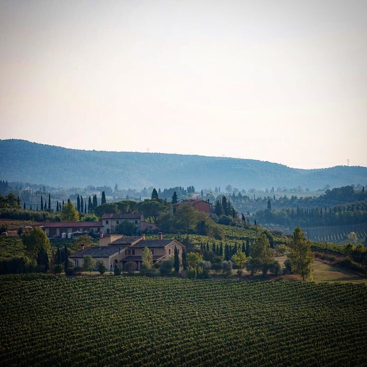 The stunning Tuscan countryside. This was taken whilst ons day trip from our base in Florence. One day I need to go back so I can just focus on capturing images of just this area.  #italy #florence #tuscany #countryside #wine #italianwine #vineyards