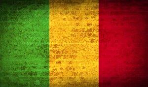 Mali Attacks