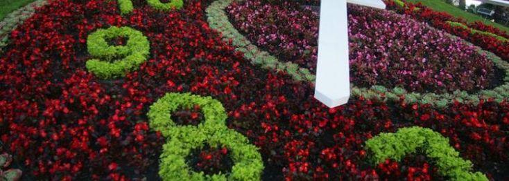 Reloj de flores de Viña del Mar (Chile)   Sitio Web Oficial de Relojes D´Mario - Colombia, Ecuador y Panamá