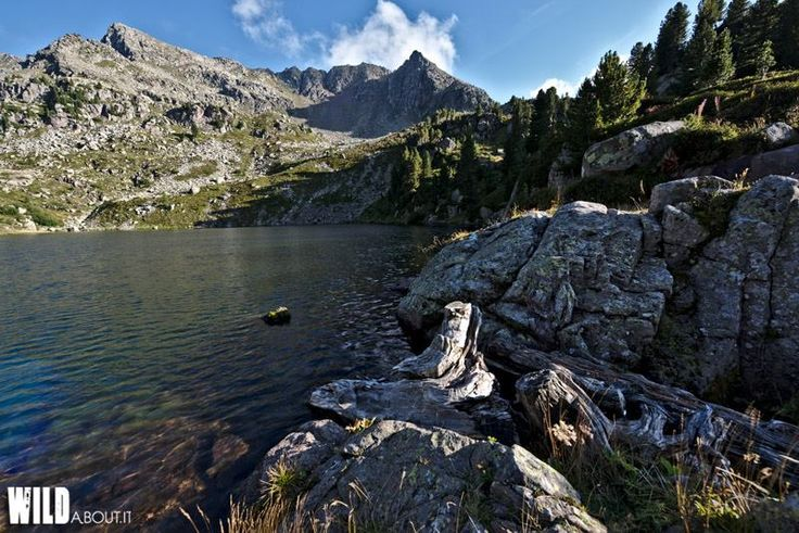 A microadventureInItaly at the beautiful Stellune's lake.