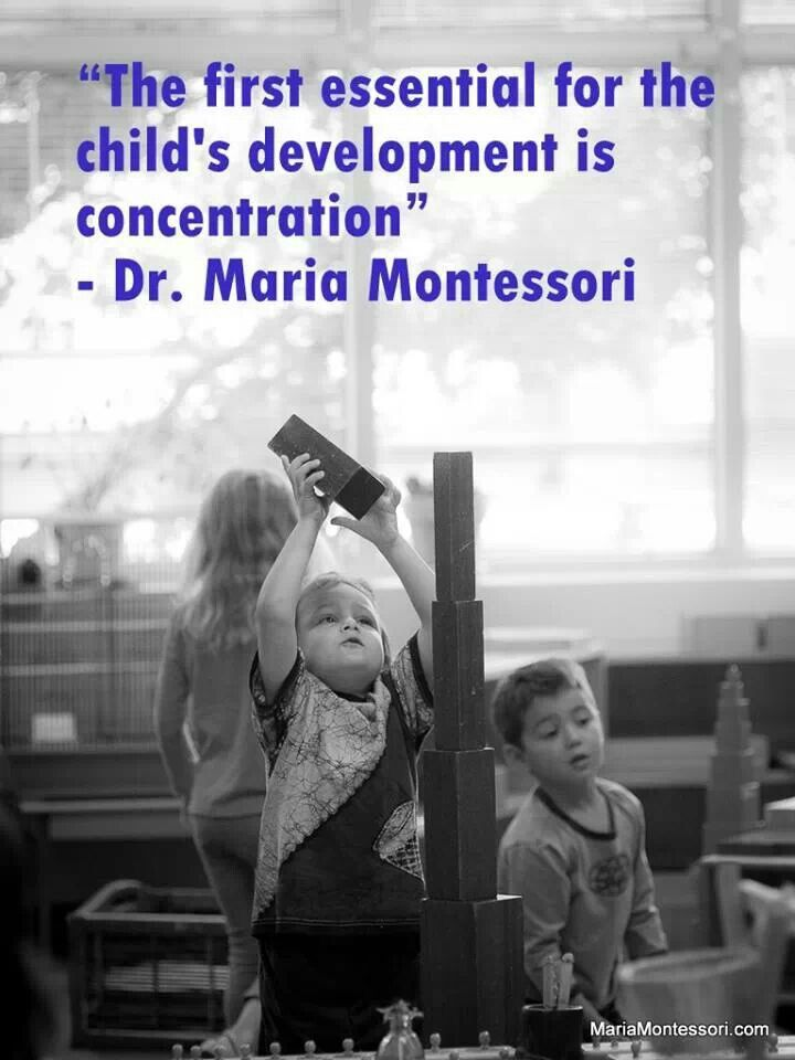 Montessori....parent education...maria montessori quote...littleorchardmontessori.com