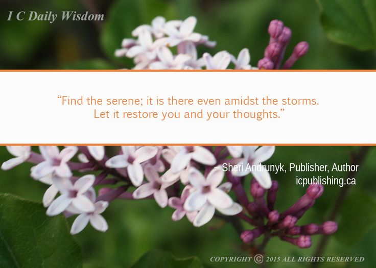 Find the serene ...
