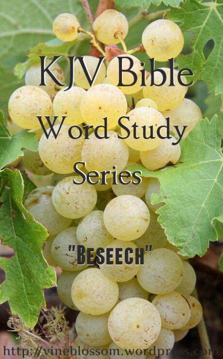 Beseech: KJV Bible Word Study Series ~ Join me as I research many confusing or unfamiliar KJV words to broaden our understanding of scripture passages. https://vineblossom.wordpress.com #KJV, #Wordstudy