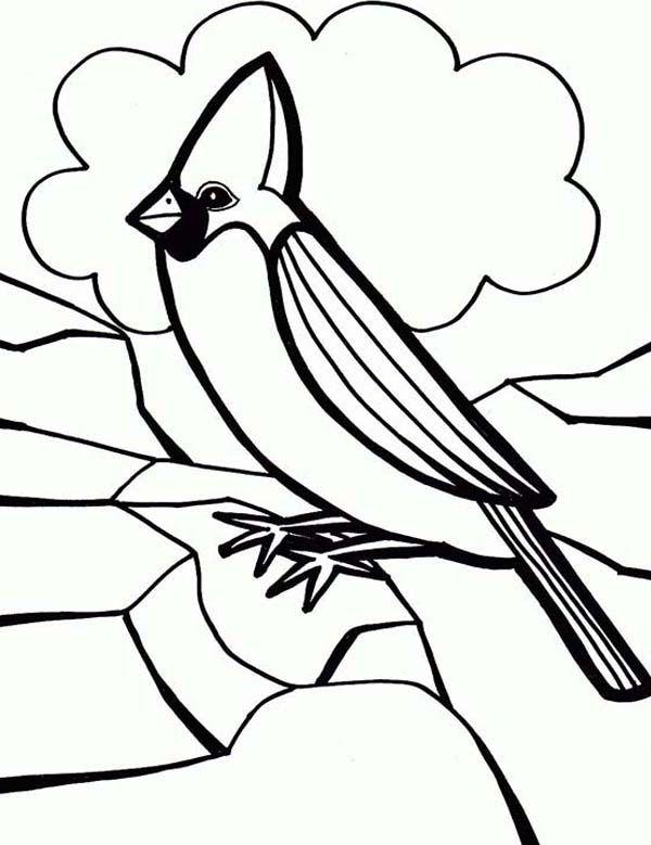 Cardinal Bird Coloring Page For Preschool Kids : Coloring Sun