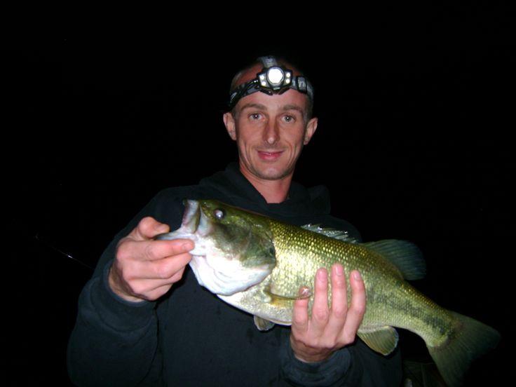 Late night bass fishing lake roosevelt az fishing for Bass fishing az