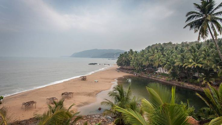 Gorgeous south Goan beach, jungle and lagoon. Like a film set...love this place!