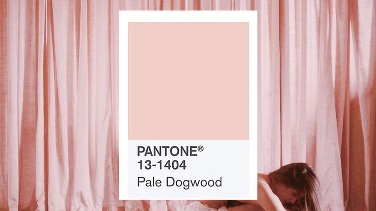 This Chic Shade of Pink is the Real Color of The Year