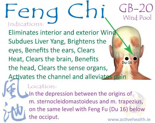 Feng Chi – (GB-20) | Active Health Foundation