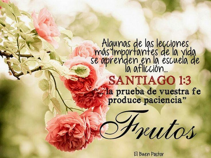 Santiago 1:3